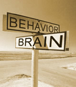 The 4 Elements of Behavior Change
